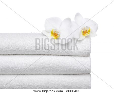 Fresh  Towels  With Orchids