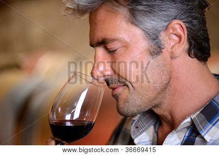 Closeup on winemaker smelling red wine in glass