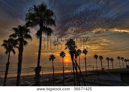 Oceanside Sunset - silhouetted tall palms on the coastline of the Pacific Ocean, 40 miles north of San Diego, California (USA).