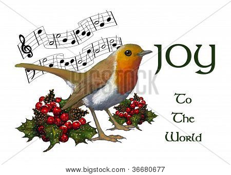English Robin: Christmas Illustration, Joy To The World