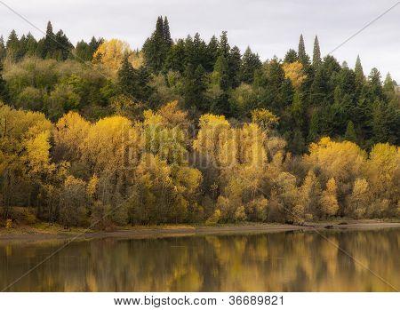Fall Color Along River