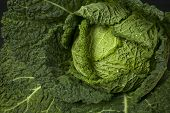picture of wett  - Fresh green savoy cabbage - JPG