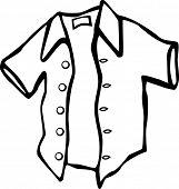 picture of button down shirt  - shirt - JPG