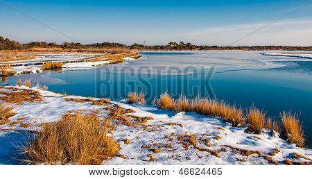 Snow Covered Marsh At Assateague Island National Seashore, Maryland.
