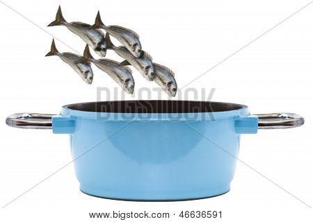 Fish Blue Pan