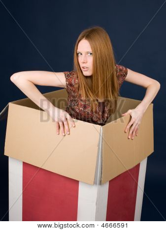 Girl Posing In Cardboard Box
