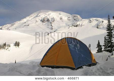 Mt. Rainier And Tent