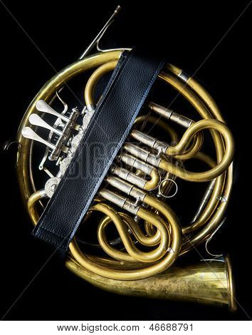 French Horn In The Case