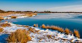 stock photo of marshes  - Snow covered marsh at Assateague Island National Seashore Maryland - JPG