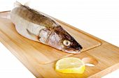 Pike perch on a wooden kitchen board, it is isolated on white