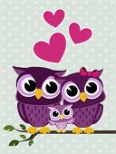 stock photo of owls  - cute owls couple with baby owl sitting on a branch - JPG