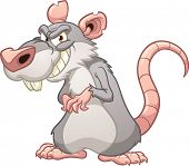 stock photo of rats  - Evil cartoon rat - JPG