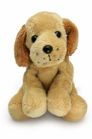 stock photo of toy dogs  - soft plush toy dog looking cute straight into the camera - JPG