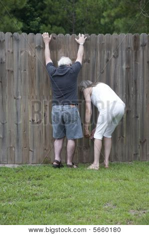Nosy Neighbors!