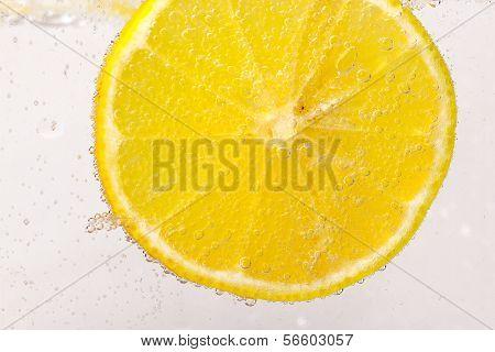 citrus squeezer with lemons
