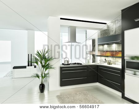 Modern luxury white and black kitchen interior