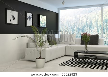 Black and white living room with comfortable couch