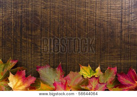 A Background Decorated With Colourful Autumn Leaves, With Copy Space