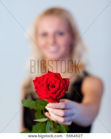 Jovem mulher segurando uma rosa com foco em rosa