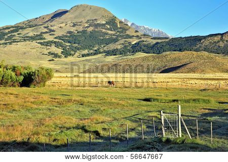Picturesque landscape in Patagonia. Charming green valley in Perrito Moreno's National park in Argentina.