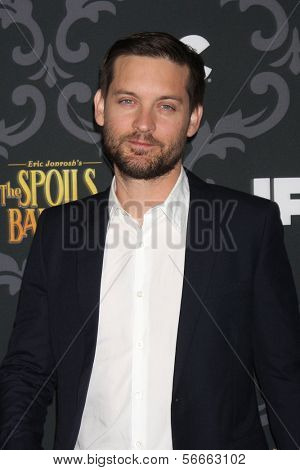 """LOS ANGELES - JAN 7:  Tobey Maguire at the IFC's """"The Spoils Of Babylon"""" Screening at Directors Guild of America on January 7, 2014 in Los Angeles, CA"""
