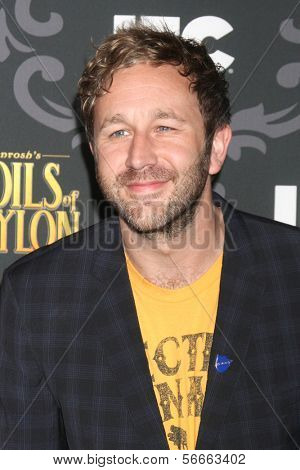 "LOS ANGELES - JAN 7:  Chris O'Dowd at the IFC's ""The Spoils Of Babylon"" Screening at Directors Guild of America on January 7, 2014 in Los Angeles, CA"