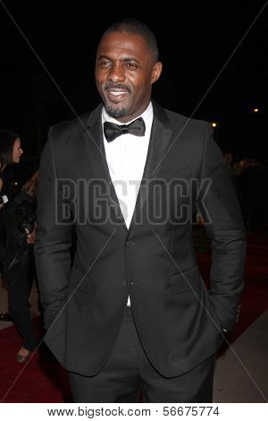 PALM SPRINGS - JAN 4:  Idris Elba at the Palm Springs Film Festival Gala at Palm Springs Convention Center on January 4, 2014 in Palm Springs, CA