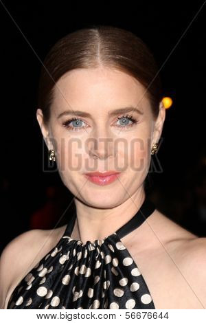 PALM SPRINGS - JAN 4:  Amy Adams at the Palm Springs Film Festival Gala at Palm Springs Convention Center on January 4, 2014 in Palm Springs, CA