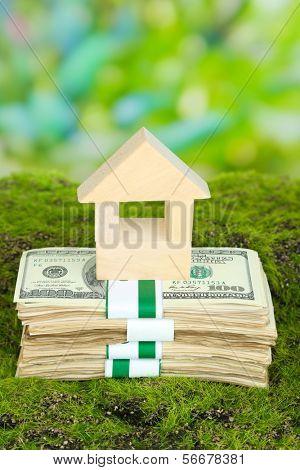 Casa de madera en los paquetes de dólares sobre hierba sobre fondo natural
