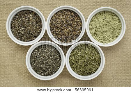 bowls of seaweed diet supplements (bladderwrack, sea lettuce, kelp powder, wakame and Irish moss) - top view