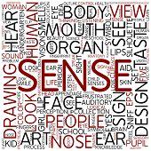 foto of sensory perception  - Word cloud  - JPG