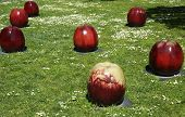 Apples glazed ceramic sculpture by Gustav Kraitz in De Young Museum in San Francisco