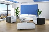 picture of lounge room  - Beautiful light living room interior with blue colored wall and white furniture - JPG