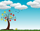 foto of apple tree  - autumn apple tree with fruits and leaves - JPG