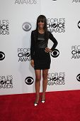 LOS ANGELES - JAN 8:  Shaun Robinson at the People's Choice Awards 2014 Arrivals at Nokia Theater at