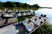 picture of biodiversity  - Tourist boat for river safari in Pantanal - JPG