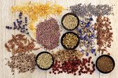 foto of pagan  - Medicinal herb selection also used in witches magical potions over wooden background - JPG