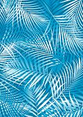 image of fern  - Vector illustration of tropical aqua fern leaves - JPG