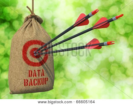 Data Backup - Arrows Hit in Red Mark Target.