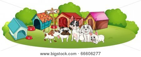 Illustration of the dogs outside their houses on a white background