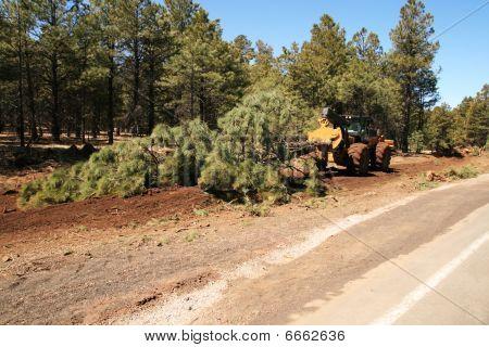 Skidder Drags A Tree