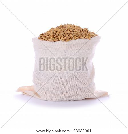 Paddy dry rice seed in sack on white background.