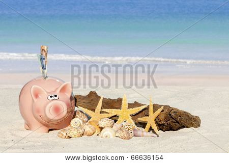 Piggy Bank Savings With Banknotes
