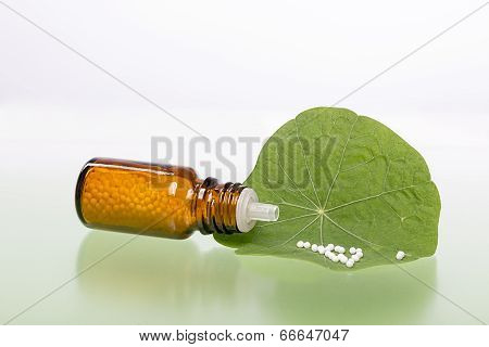 Bottle With Homeopathy Globules And Green Leaf
