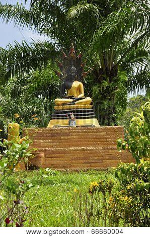 Buddhist Icon near Thai Muang