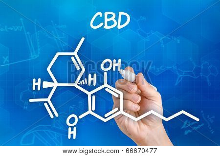 Hand with pen drawing the chemical formula of CBD