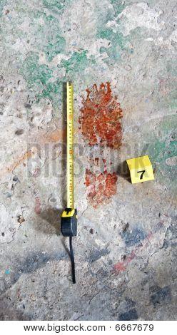 Bloody Footprint