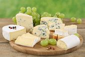 stock photo of cheese platter  - Cheese plate with Camembert soft cheese and Brie on a wooden board