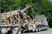image of logging truck  - Man with special crane equipment load truck trailer with wood logs near forest - JPG