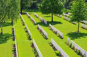 foto of world war one  - New British Cemetery world war 1 flanders fields